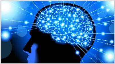 脑梗塞有特效药吗?天然水蛭素,治疗脑梗塞(脑梗死)的一大进步-木子李笔记